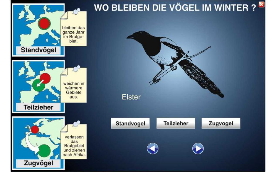 Digitale Folien Grundwissen Ökologie III: Überwinterung